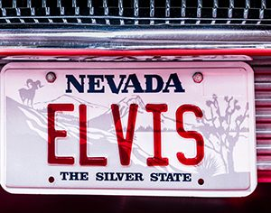 funny celebrity license plates