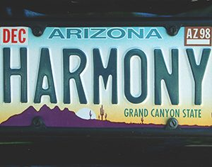 specialty license plates