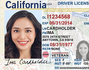 state id card photo tips